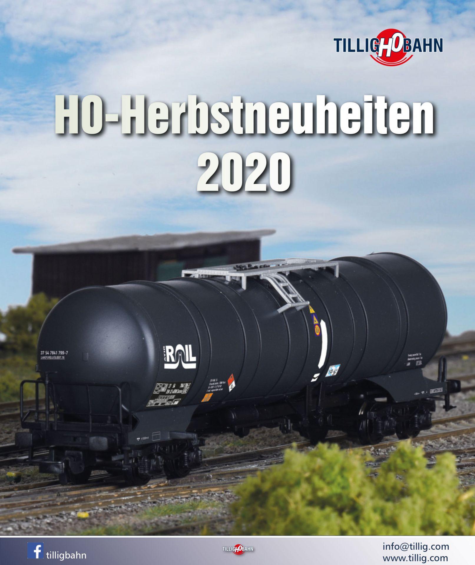 H0e 2020 H0m Tillig Modellbahnkatalog H0 2021 Artikel 09584